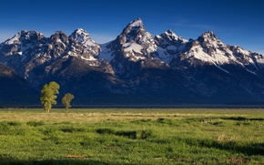 Picture field, landscape, mountains
