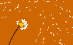 Wallpaper flower, dandelion, the wind, blade