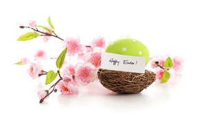 Picture flowers, eggs, spring, Easter, pastel, happy, pink, blossom, flowers, spring, eggs, easter, delicate, nest, pastel