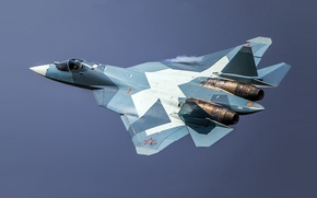 Picture Fighter, T-50, Dry
