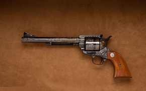 Wallpaper colt, engraving, frontier