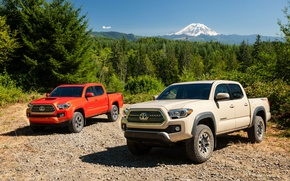 Picture Toyota, Sport, Cars, TRD, Tacoma, 2016