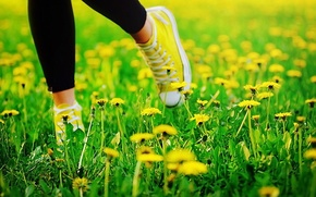 Picture summer, grass, feet, sneakers, dandelions
