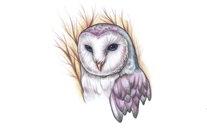Picture branches, owl, bird, painting, owl