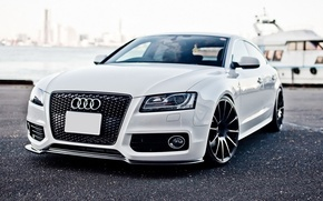 Picture Audi, audi, white, tuning, the front