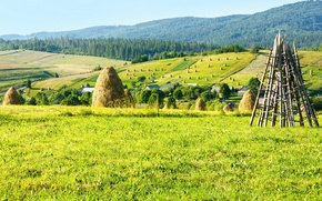 Picture field, forest, mountains, nature, stack, hay, Ukraine, Carpathians