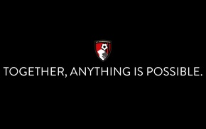 Picture wallpaper, sport, logo, football, AFC Bournemouth