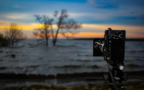 Picture waves, Sony, twilight, trees, sunset, camera, lake, dusk, wind, long exposure