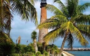 Wallpaper Lighthouse, FL, Palm trees