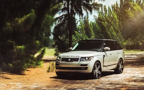 Picture car, jeep, SUV, range rover, tuning, rechange