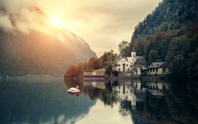 Picture forest, mountains, nature, lake, home, swans