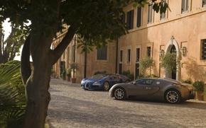 Wallpaper Tree, Bugatti Veyron, House, Light