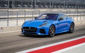 Picture Jaguar, Coupe, Track, F-Type, SVR
