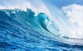 Picture sea, foam, wave