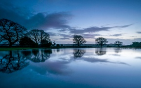 Picture forest, the sky, clouds, trees, reflection, river, blue, Night, before the dawn