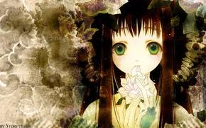 Picture flower, face, girl, long hair, green eyes, bangs, Storyteller