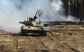 Picture Forest, Russia, Tank