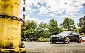 Picture the sky, clouds, trees, black, bmw, BMW, black, f82, the hose