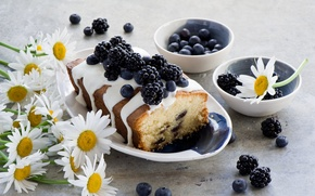 Picture flowers, berries, chamomile, blueberries, BlackBerry, cupcake