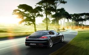 Picture trees, Porsche, Panamera, Porsche, Panamera, 2015