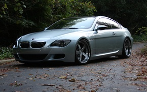 Picture road, leaves, trees, reflection, bmw, BMW, silver, wheels, drives, road, e63, silvery