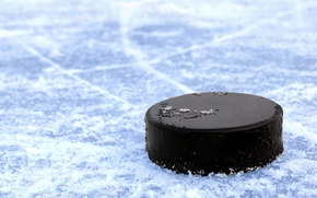 Picture ice, strip, blade, black, hockey, washer, macro., skates, penetration, ice