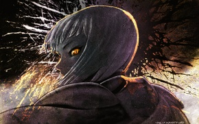 Picture look, eyes, fire, Claymore