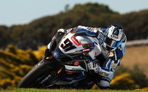 Picture suzuki, motosport, motogp