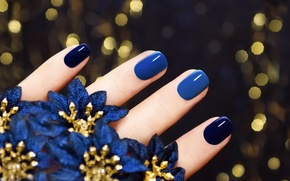 Wallpaper macro, blue, fingers, manicure, flowers, background, nails