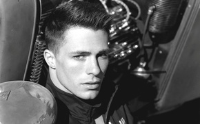 Picture Colton Haynes, black and white, actor