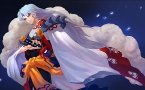 Picture anime, the demon, art, guy, Inuyasha, Seshoumaru