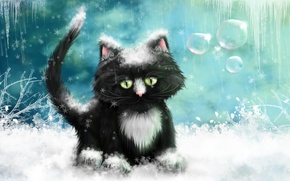 Wallpaper frost, picture, snow, winter, figure, icicles, ice, cat
