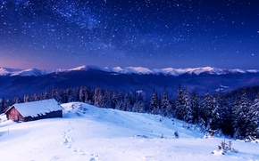 Picture winter, forest, the sky, snow, trees, mountains, houses
