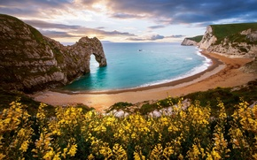 Picture sea, beach, flowers, nature, rock, arch