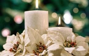 Wallpaper Heat, Flowers, Lights, Comfort, Candles