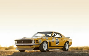 Picture Mustang, Ford, 302, Boss, Trans, 970, Power, Kar