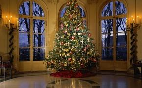 Wallpaper tree, decoration, gerlanda, holiday, house