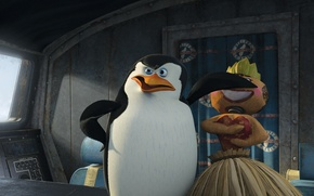 Picture cartoon, doll, Madagascar, penguin