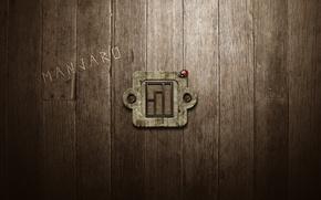 Picture the inscription, Board, ladybug, logo, Manjaro Linux