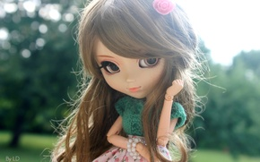 Picture look, doll, hairstyle, Flirty