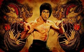 Picture dragons, legend, Bruce Lee, bruce lee, karate
