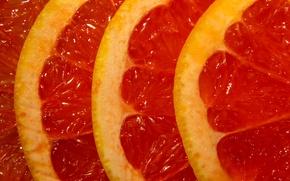 Picture macro, fruit, Slices of grapefruit
