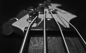 Picture macro, guitar, strings, guitar, pick, Grif, bass, Bass