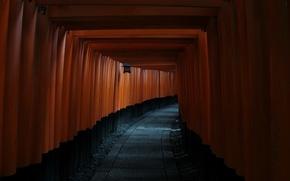 Picture japan, monument, fushimi inarii taisha