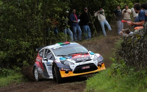Picture trees, ford, the audience, fiesta, erc, super 2000, rrc, bernardo sousa, rally acores