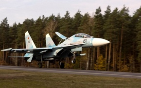 Picture landing, Su-27UB, Flanker-С, double training-combat fighter, air force Belarus