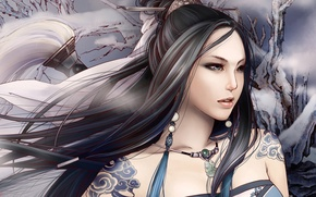Picture winter, girl, fantasy, the wind, warrior