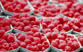 Picture red, raspberry, tray