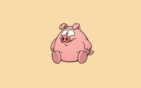 Picture minimalism, pig, light background, pig, pig