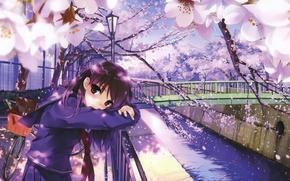Picture bridge, bike, river, spring, fence, petals, Japan, Sakura, lantern, schoolgirl, flowering, art, Misaki Kurehito